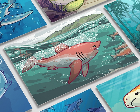 Shark Species Illustrations